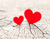 Decoration, two Valentines heart — Stockfoto