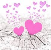 Heart — 图库照片