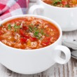 Tomato soup with rice and vegetables in a bowl — Stock Photo #52284173