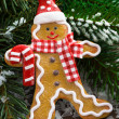 Gingerbread man in the snow and spruce branches, close-up — Stock Photo #54025317