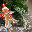 Gingerbread man in the snow and spruce branches — Stock Photo #54025331