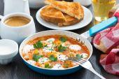 Fried quail eggs in tomato sauce — Stock Photo
