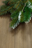 Wooden background with fir branches, vertical — Stock Photo
