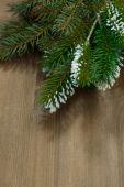 Dřevěné pozadí s větvemi jedlí, vertikální — Stock fotografie