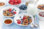 Breakfast with granola, berries, honey and yogurt, horizontal — ストック写真