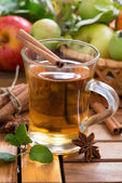 Spiced apple cider in a mug — Stock Photo