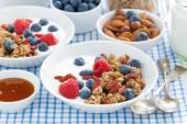 Delicious breakfast with granola, berries and yogurt — ストック写真