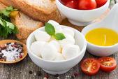 Fresh mozzarella and ingredients for a salad, close-up — ストック写真