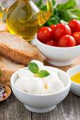 Fresh mozzarella and ingredients for a salad, vertical — ストック写真