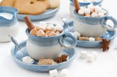 Two cups of cocoa with marshmallows and cinnamon — Stock Photo
