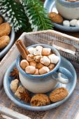 Spicy cocoa with marshmallows, cinnamon and cookies — Stock Photo