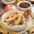 Oatmeal with apples, raisins, cinnamon and ingredients, vertical — Stock Photo #60595879
