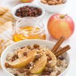 Oatmeal with apples, raisins, cinnamon and ingredients on white — Stock Photo #60824521