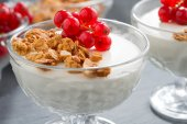 Creamy panna cotta with granola and fresh red currants, close-up — Stock Photo