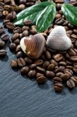 Coffee beans and chocolate candies on dark background, vertical — Stock Photo