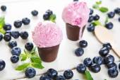 Blueberry ice cream or frozen yogurt and sprig of mint, with fre — Stock Photo