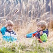 Two little sibling boys fighting and having fun — Stock Photo #52858785
