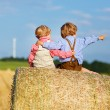 Two little twin boys and friends sitting on hay stack  — Stock Photo #52859191