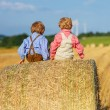 Two little sibling boys and friends sitting on hay stack  — Stock Photo #52859243