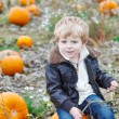 Little toddler boy on pumpkin field — Stock Photo #52859787