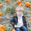 Little toddler boy on pumpkin patch field — Stock Photo #52859811