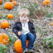 Little toddler boy on pumpkin patch field — Stock Photo #52859819
