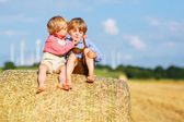Two little sibling boys and friends sitting on hay stack  — Stock Photo