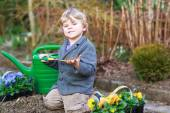 Little boy gardening and planting flowers in garden — Stock Photo