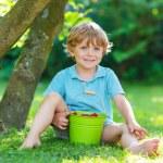 Adorable little preschool kid boy eating raspberries in home's g — Stock Photo #53760275