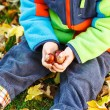 Hands of little kid holding chestnuts — Stock Photo #53760379