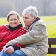 Happy senior couple in love. Park outdoors. — Stock Photo #55578487