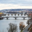 View of the bridges on cold spring or autumn day, Prague, the Cz — Stock Photo #55579207