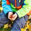 Hands of little kid holding chestnuts — Stock Photo #55582165