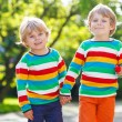 Two little brothers children in colorful clothing walking hand i — Stock Photo #55584709