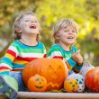 Two little sibling boys making jack-o-lantern for halloween in a — Stock Photo #56000249