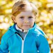 Little kid boy with yellow autumn leaves in park — Stock Photo #56403651