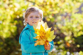 Little kid boy with yellow autumn leaves in park — Stock Photo
