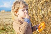 Funny cute little kid boy eating pretzel on late summer day on w — Zdjęcie stockowe