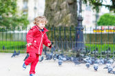 Cute little  boy catching and playing with pigeons in city — Stock Photo