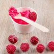 Frozen creamy ice yoghurt  with whole raspberries — Stok fotoğraf #60636661