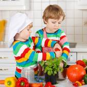 Two funny little boys cooking italian soup and meal with fresh v — Stock Photo