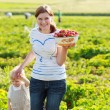 Mother and her little kid child on organic strawberry farm — Stock Photo #60640325
