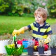 Cute kid boy learning to plant flowers in home's garden — Stock Photo #61784637