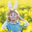 Funny kid of 3 years with Easter bunny ears, celebrating Easter — Stock Photo #62354649
