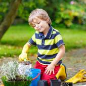Funny little boy gardening and planting flowers in home's garden — Stock Photo