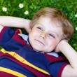 Happy little blond boy with blue eyes laying on the grass — Stock Photo #63789499