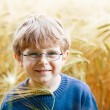 Adorable preschooler kid boy with glasses in wheat field — Stock Photo #63789583
