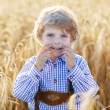 Funny little kid boy in leather shors, walking  through wheat fi — Stock Photo #63791563
