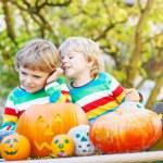 Two little kid boys making jack-o-lantern for halloween in autum — Stock Photo #68681973