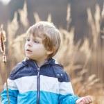 Little boy having fun with bulrush near forest lake — Stock Photo #70483419